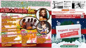 SABISHINBO2011_B